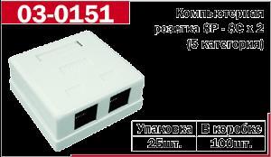 Компьютерная  розетка - 2*RJ - 45  5 категория   (FD-6166)